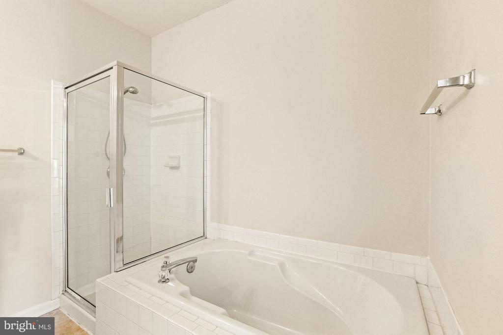 Jacuzzi Bath - 20220 MACGLASHAN TER, ASHBURN