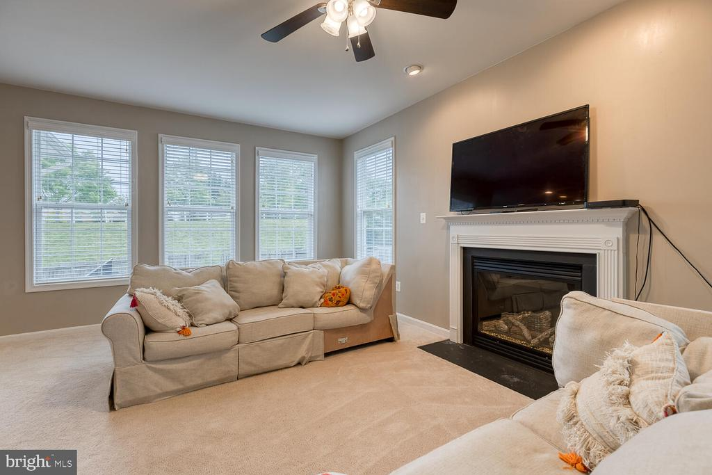 Family room with lots of natural light - 60 SANCTUARY LN, STAFFORD