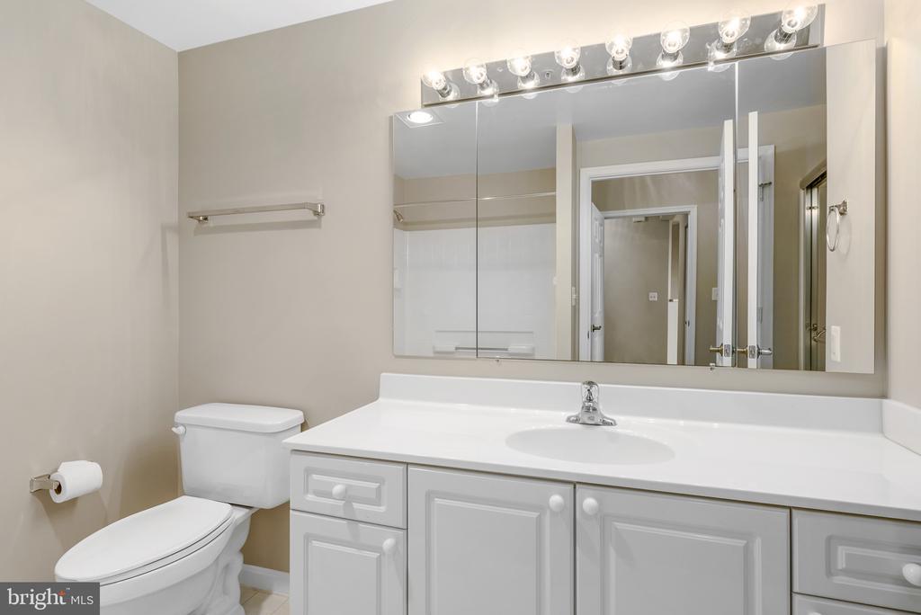 Owner's Bathroom - 19365 CYPRESS RIDGE TER #1109, LEESBURG
