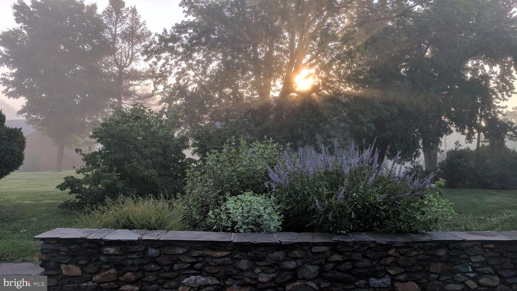 View from patio - 20775 AIRMONT RD, BLUEMONT