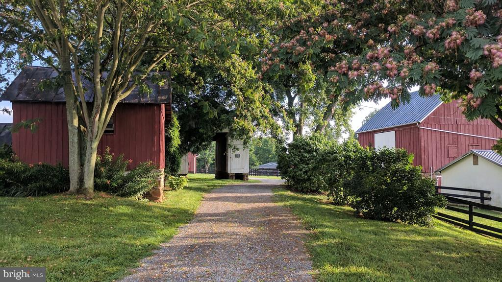 Pretty lane from home to barns, stable - 20775 AIRMONT RD, BLUEMONT