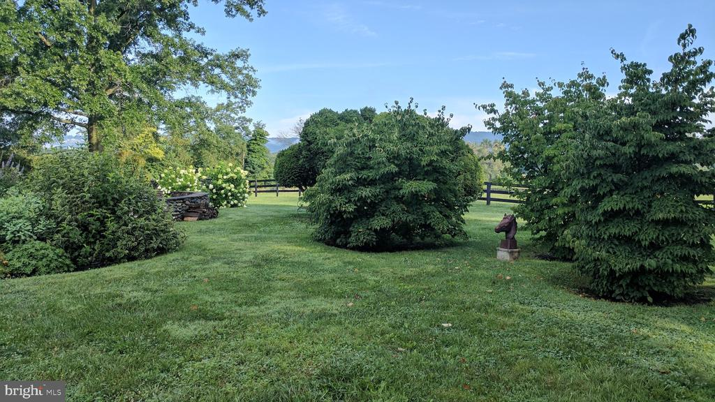 Lawn in rear of home - 20775 AIRMONT RD, BLUEMONT