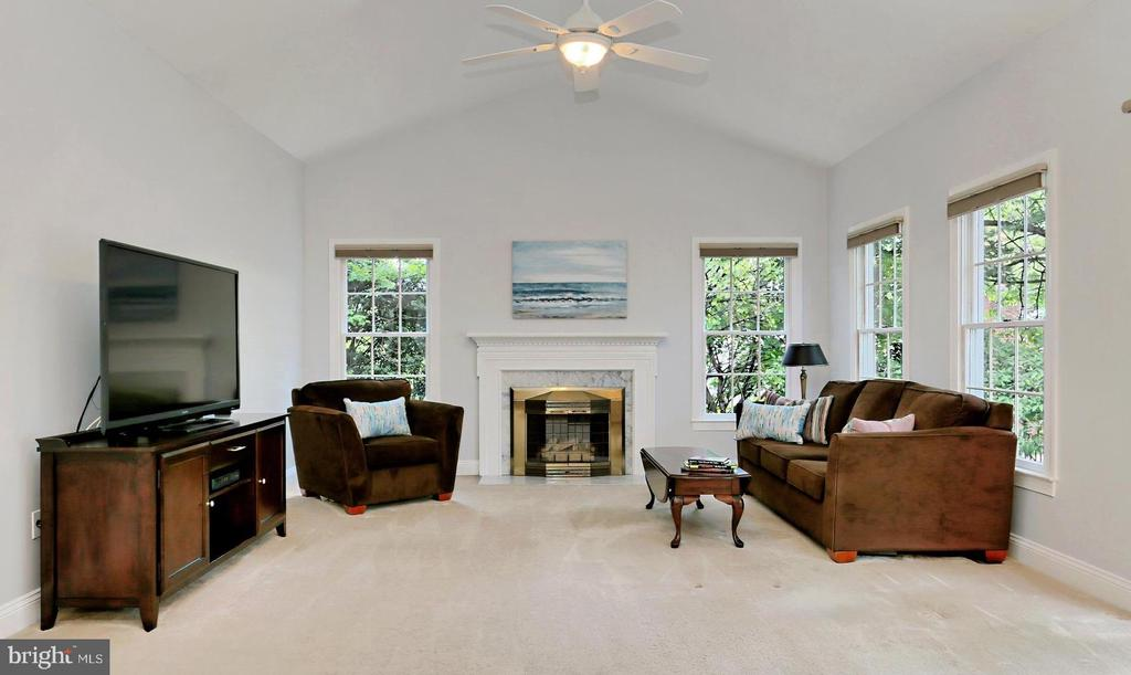 Relax in the Family Rm with gas fireplace - 508 DRANESVILLE RD, HERNDON