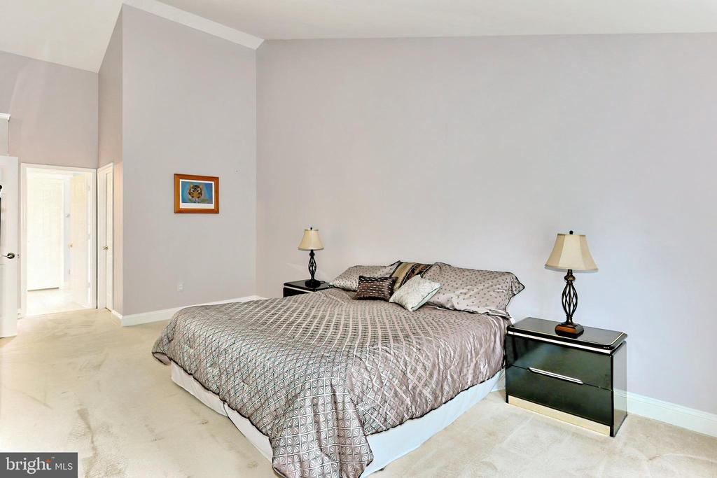 Spacious Primary Bedroom - 508 DRANESVILLE RD, HERNDON