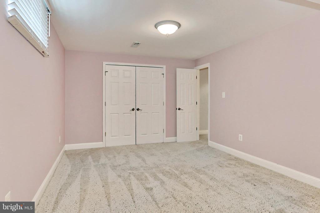 Lower lvl Bonus Room with closet - 508 DRANESVILLE RD, HERNDON