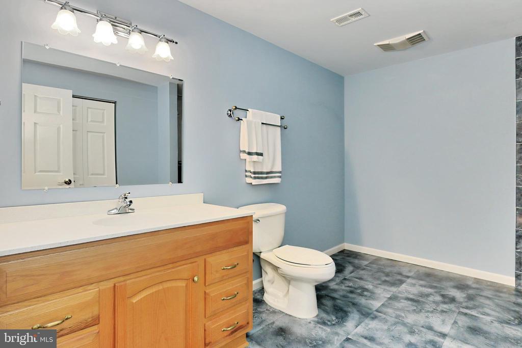 Lower lvl full bath - 508 DRANESVILLE RD, HERNDON