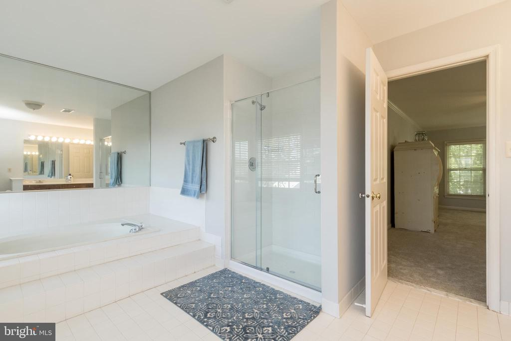 Primary Bath Soaking Tub and Separate Shower - 13645 MELSTONE DR, CLIFTON
