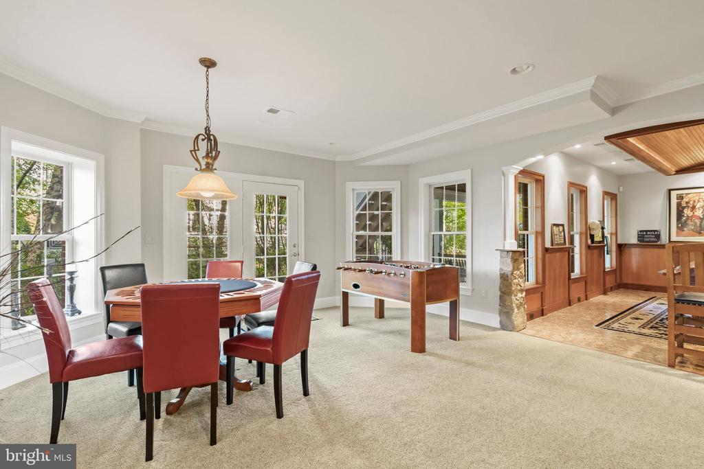 Walk-Out Lower Level with Bright Windows - 43327 RIVERPOINT DR, LEESBURG