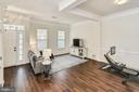AMPLE natural light - 43533 MINK MEADOWS ST, CHANTILLY