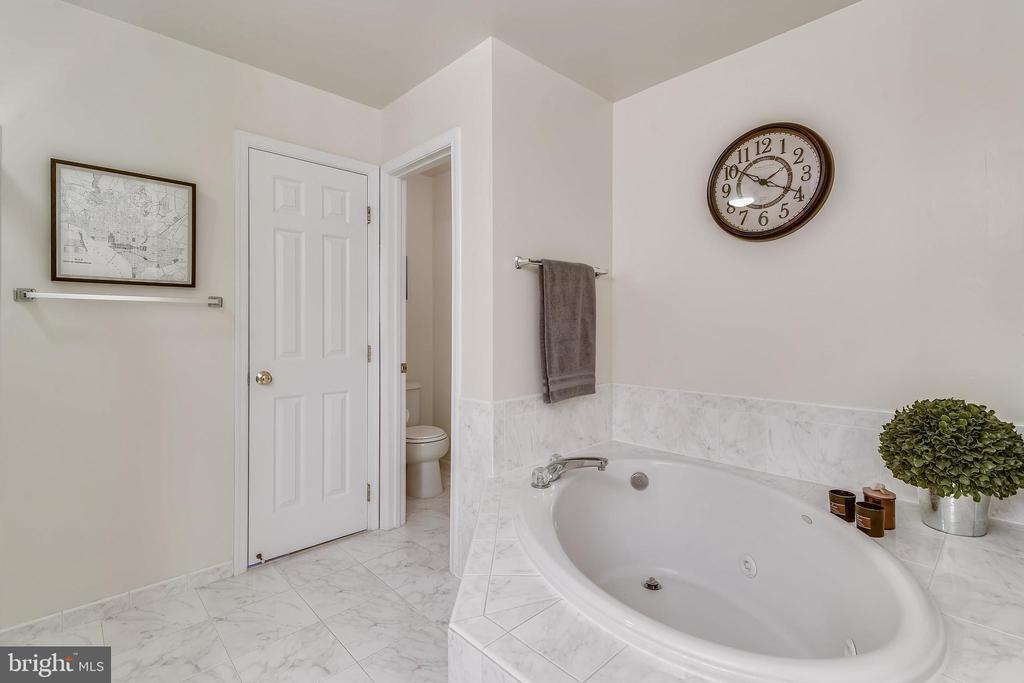 Owner's Bath soaking tub & second walk in closet. - 43533 MINK MEADOWS ST, CHANTILLY