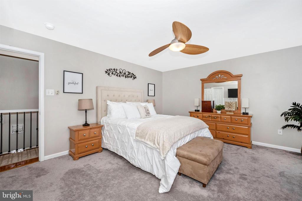 Large Primary bedroom w/newer carpet - 17004 INDIAN GRASS DR, GERMANTOWN