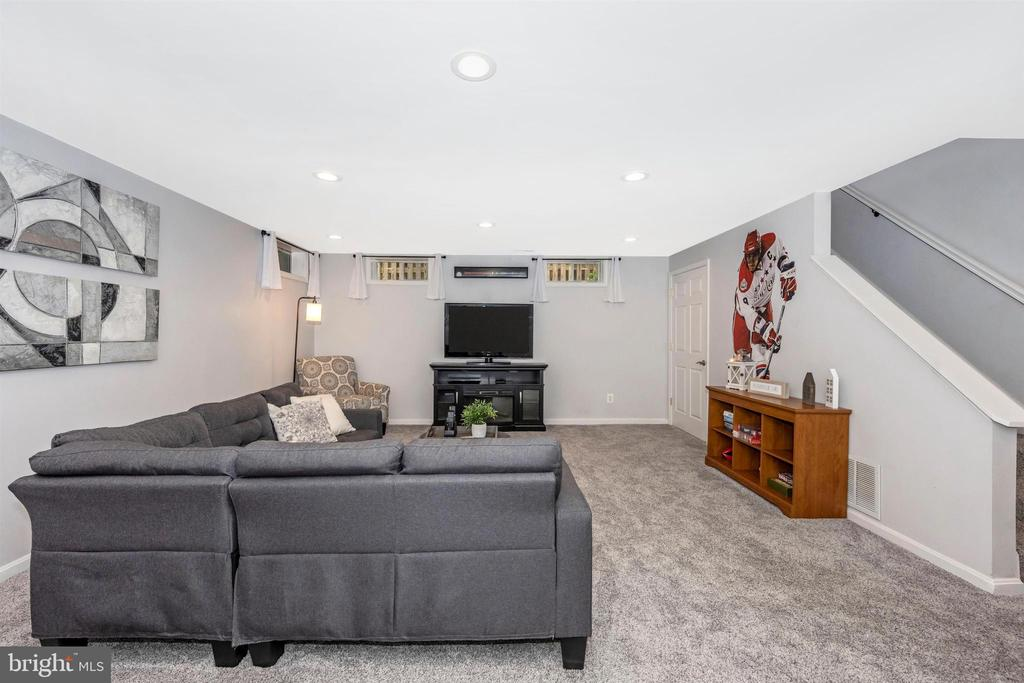 Lower level rec room - 17004 INDIAN GRASS DR, GERMANTOWN