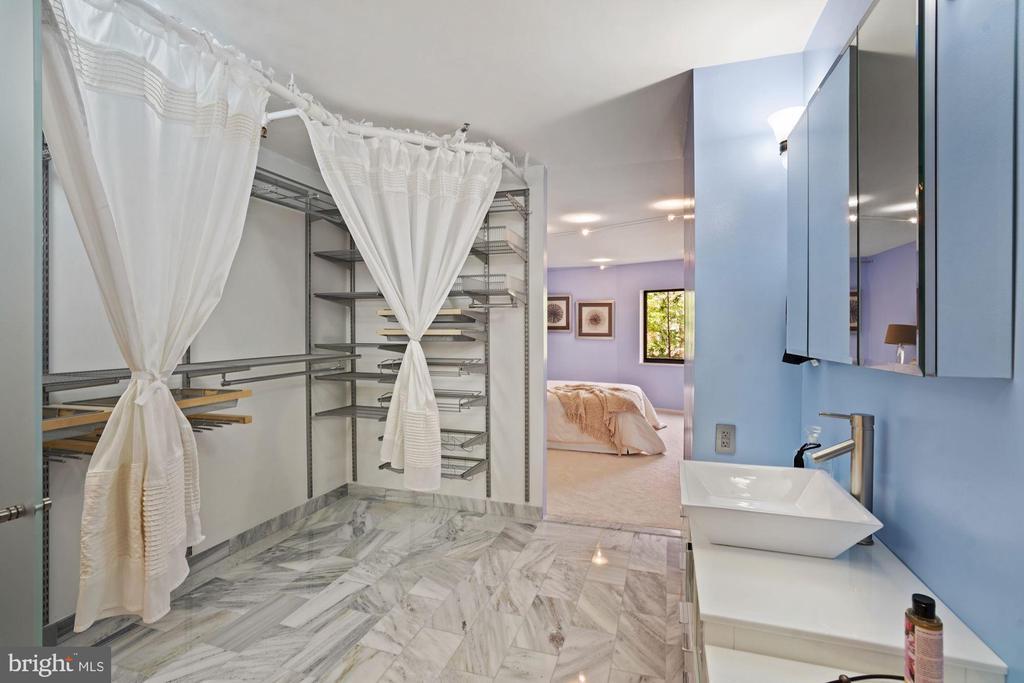 Ample closet space - 1600 N OAK ST #532, ARLINGTON