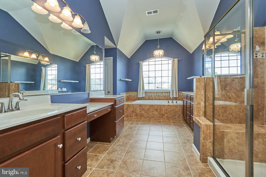 Separate Tub and Shower - 13944 BARRYMORE CT, GAINESVILLE