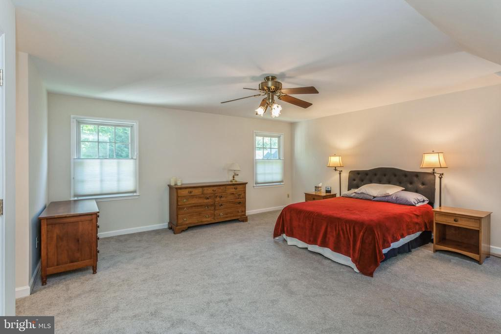 Enormous primary suite, all new carpeting on upper - 13619 BRIDGELAND LN, CLIFTON
