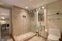 Beautifully Renovated Full 3rd Bath  (Lower Level) - 2502 CHILDS LN, ALEXANDRIA