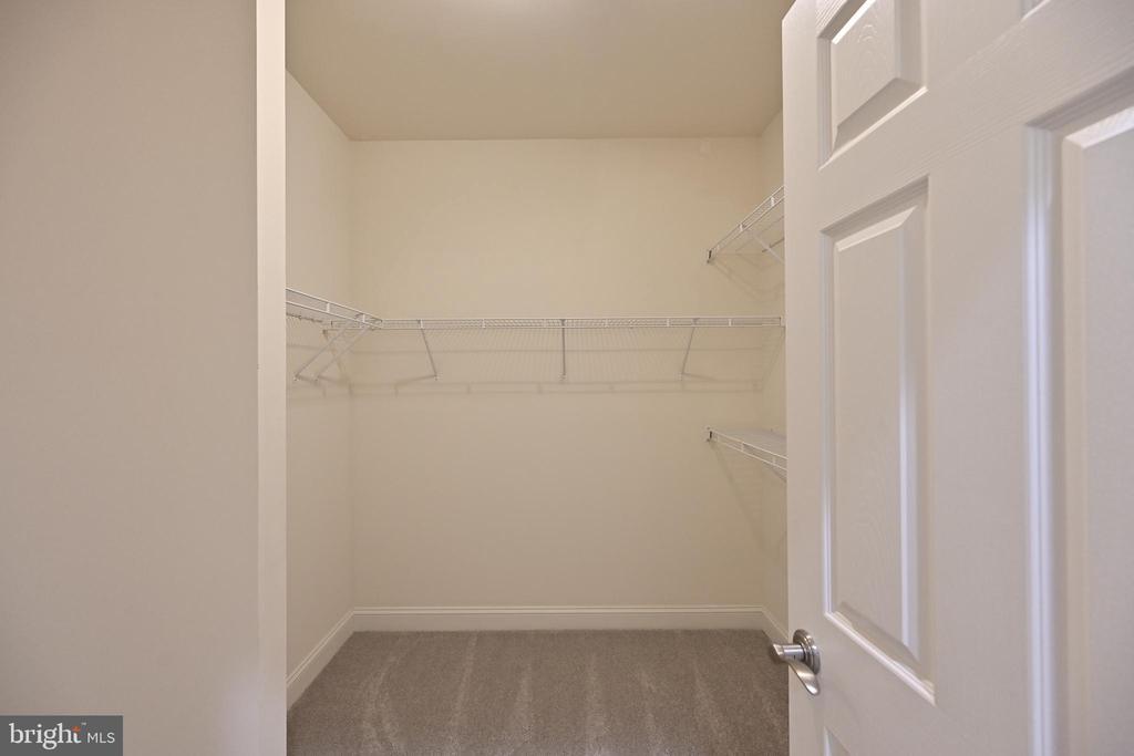 Master walk-in closet - 17215 IVANDALE RD, HAMILTON