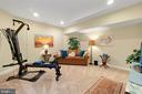 Basement bedroom - 9903 S HARRIS FARM RD, SPOTSYLVANIA