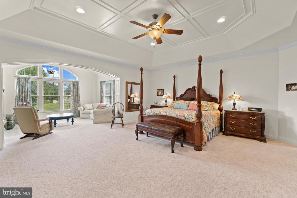 Immense primary bedroom with tray ceilings - 9903 S HARRIS FARM RD, SPOTSYLVANIA