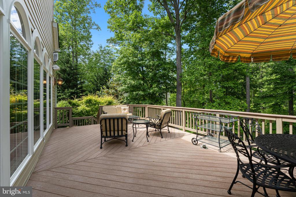 Relax or Dine in Private Natural Setting - 11500 TURNING LEAF CT, SPOTSYLVANIA