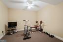 Exercise or Flex Room - 11500 TURNING LEAF CT, SPOTSYLVANIA