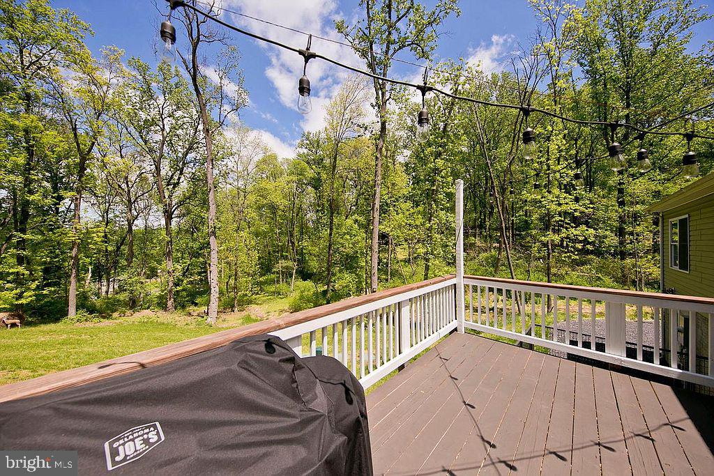 Beautiful tree lined property - 677 NORTHERN SPY DR, LINDEN