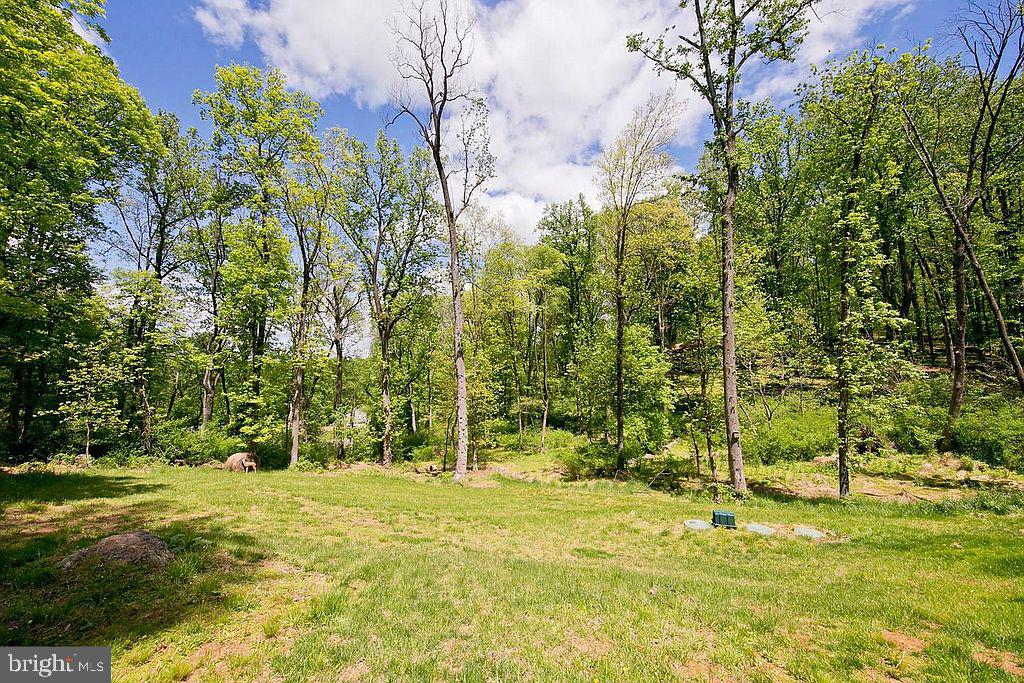 Spacious 1 acre property - 677 NORTHERN SPY DR, LINDEN