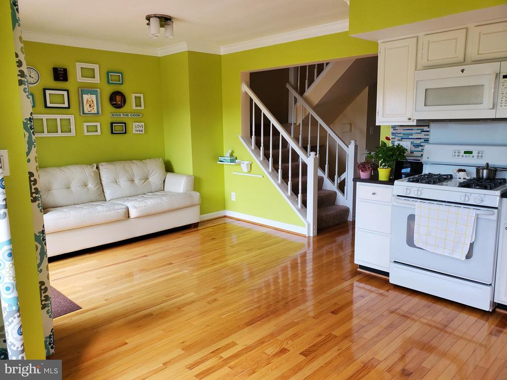 Kitchen - Family Room Combo - 21238 HEDGEROW TER, ASHBURN