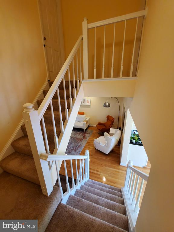Stair Case - 21238 HEDGEROW TER, ASHBURN