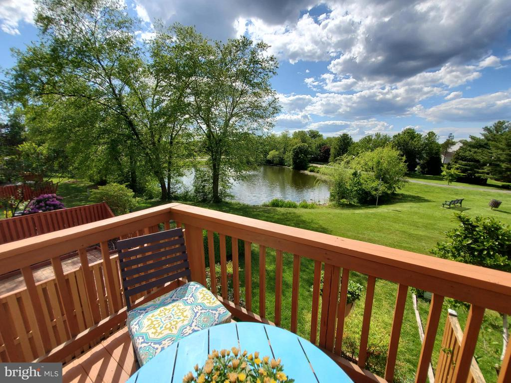 View From Deck - 21238 HEDGEROW TER, ASHBURN