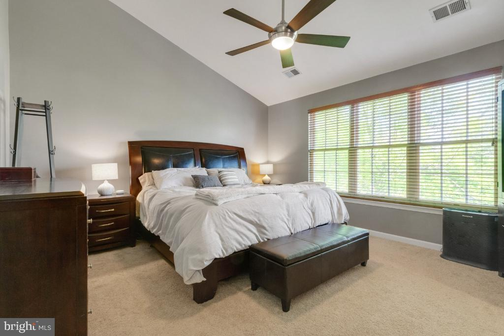 Primary Suite with Vaulted Ceilings - 25554 DABNER DR, CHANTILLY