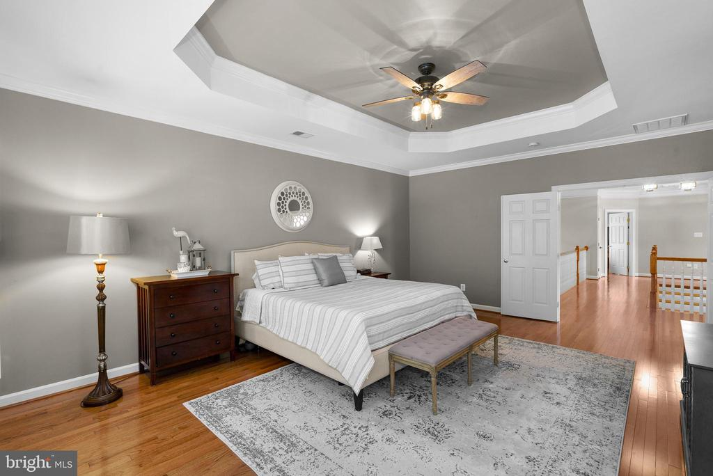 Tray Ceiling in Primary Bedroom - 47273 OX BOW CIR, STERLING