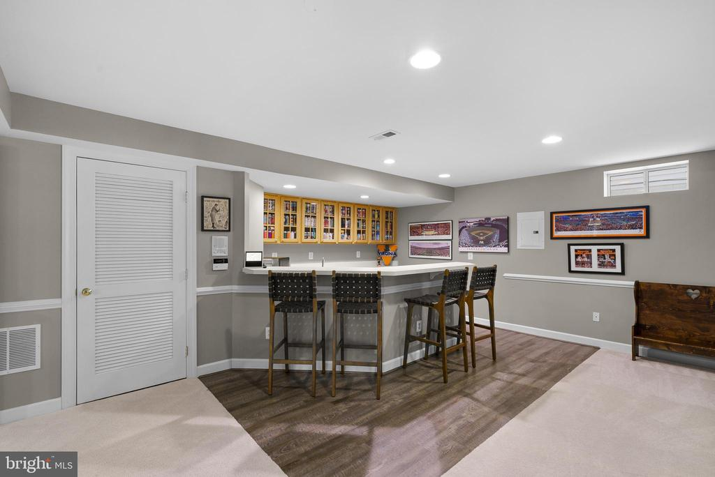 Party Time in the Finished Lower Level - 47273 OX BOW CIR, STERLING