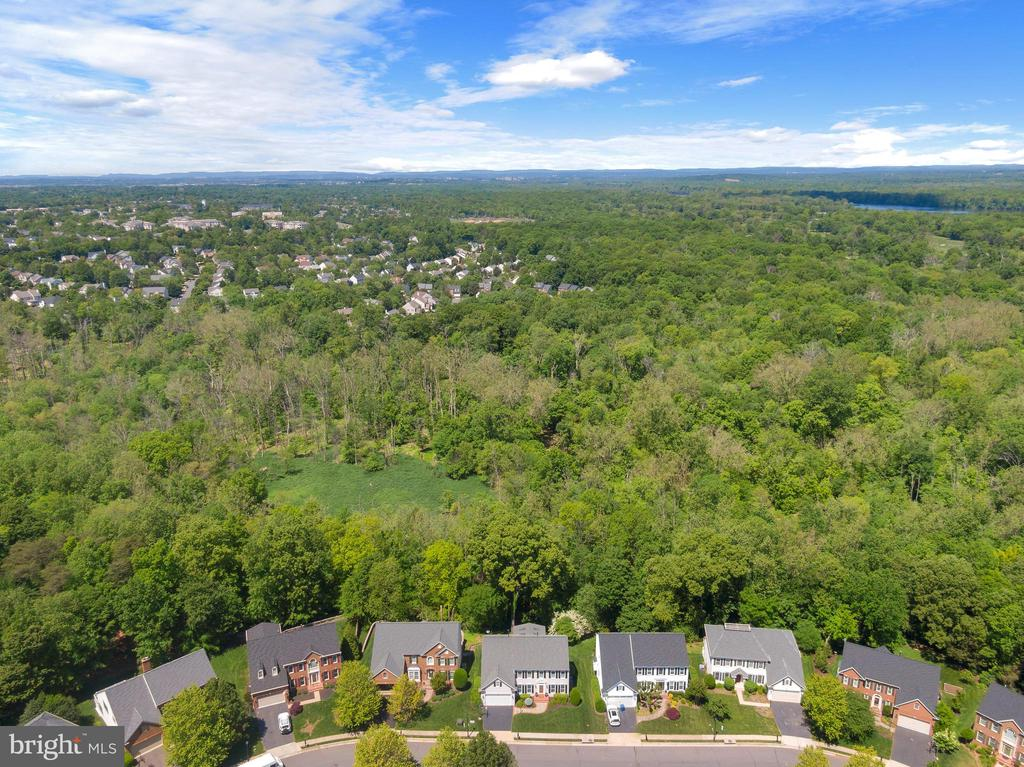 Perfectly Sited Backing to Acres of Parkland - 47273 OX BOW CIR, STERLING