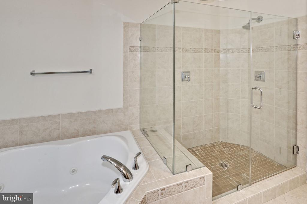 Master bathroom with separate tub and shower - 24905 EARLSFORD DR, CHANTILLY