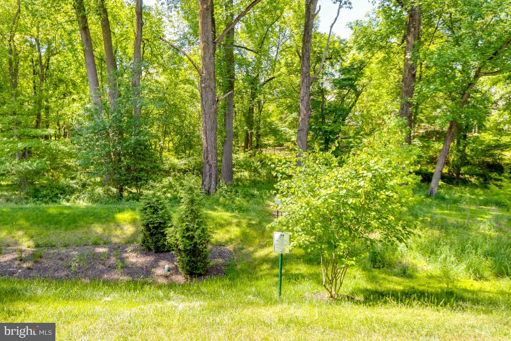 Views of green preserve from covered deck - 9754 KNOWLEDGE DR, LAUREL