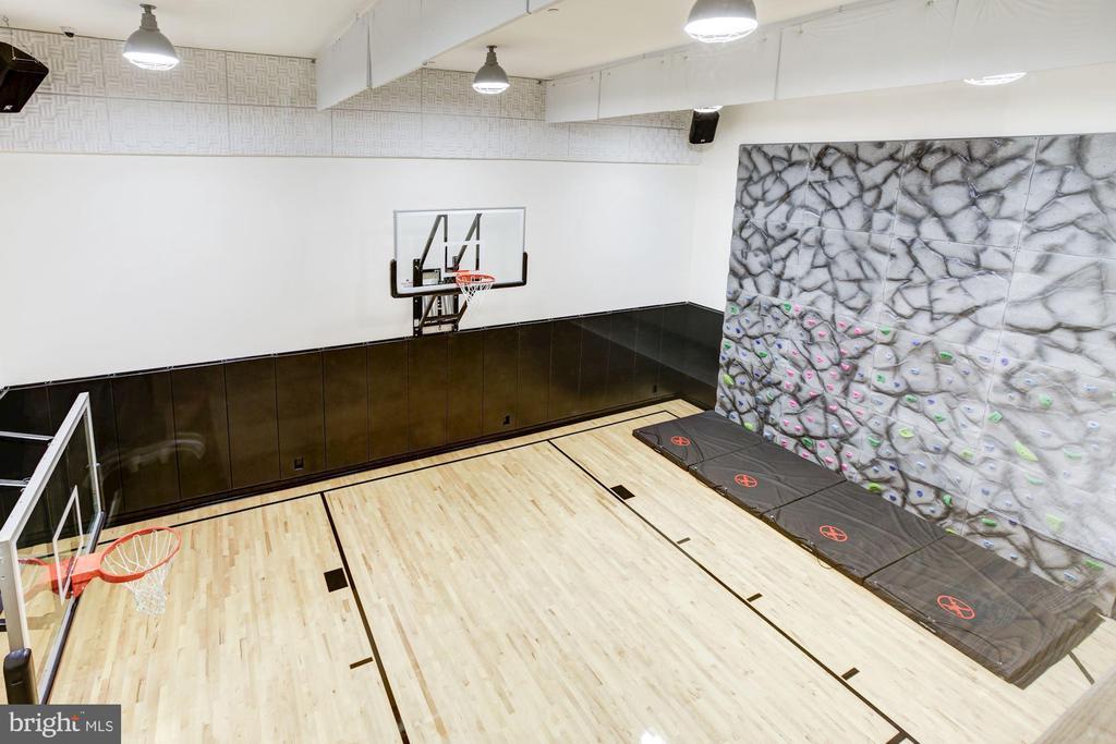 Basketball  Court & El Dorado Climbing Wall - 8905 HOLLY LEAF LN, BETHESDA