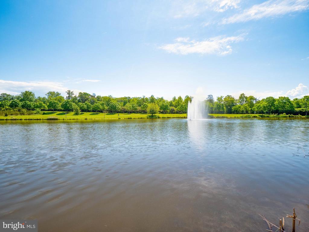 Gorgeous lake with walking and biking trails - 25300 LAKE MIST SQ #205, CHANTILLY