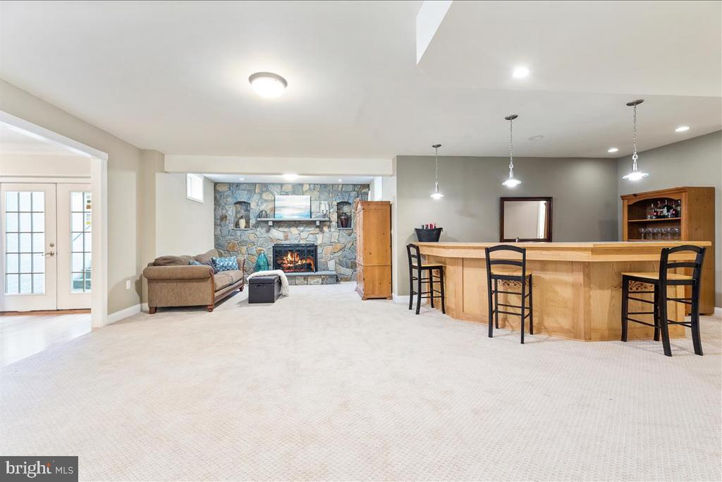 Rec room with bar area - 19445 MILL DAM PL, LEESBURG
