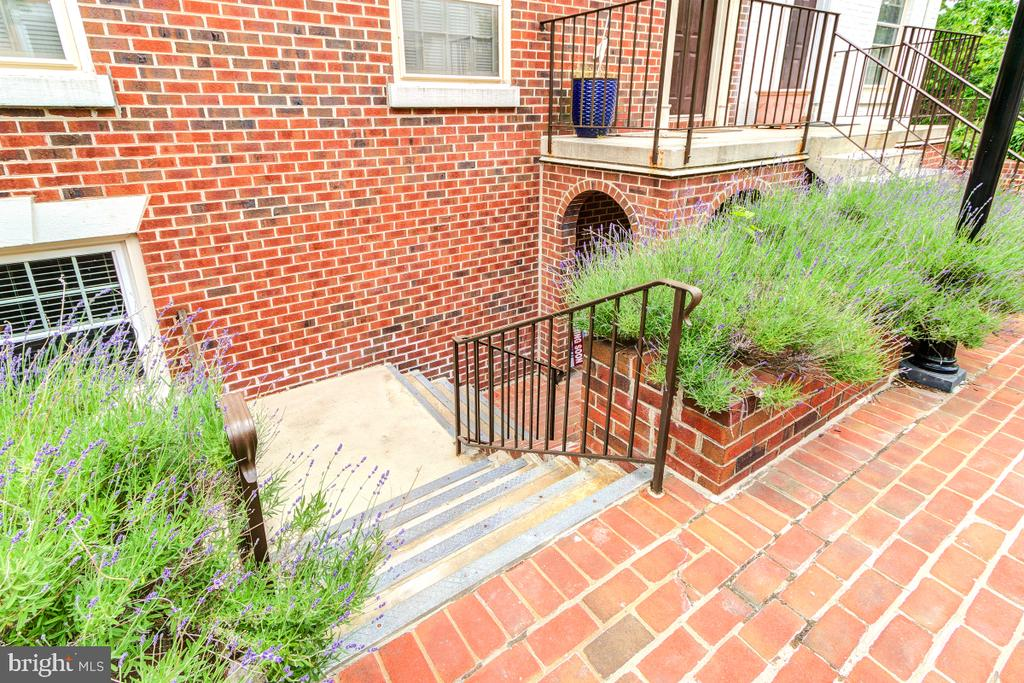 Steps to the front door - 4345 MASSACHUSETTS AVE NW #4345, WASHINGTON