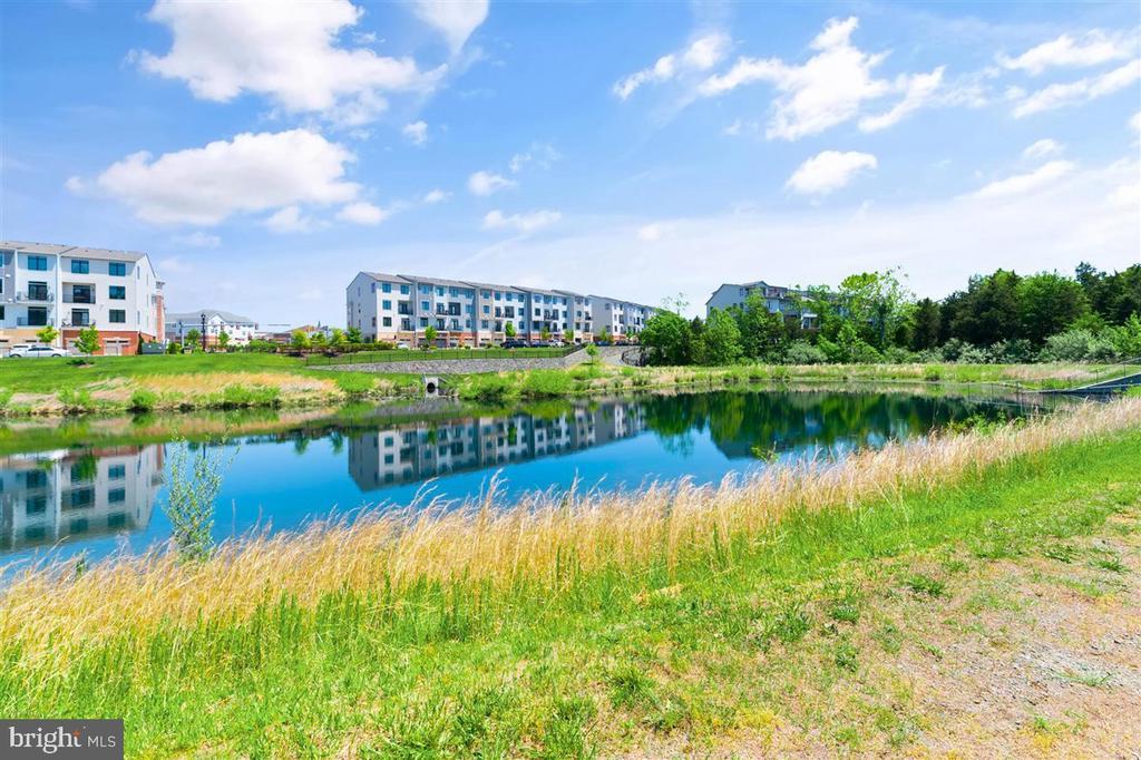 view - 1800 BLUE MARBLE TER SE, LEESBURG