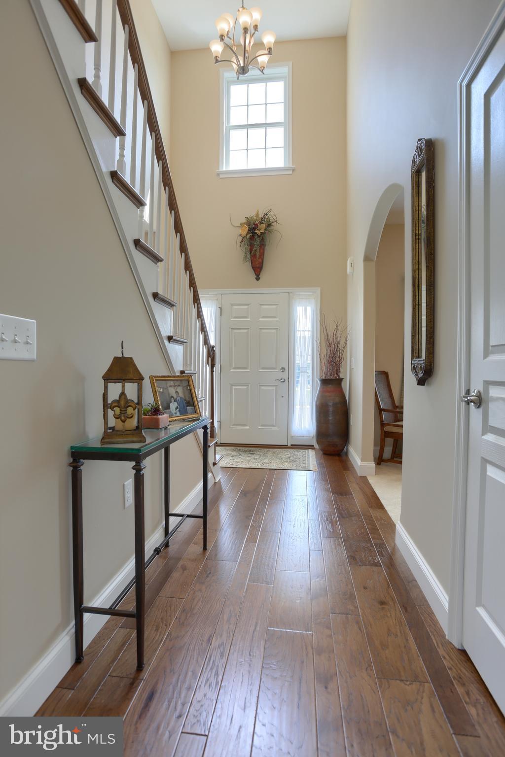 Hallway with hardwood flooring