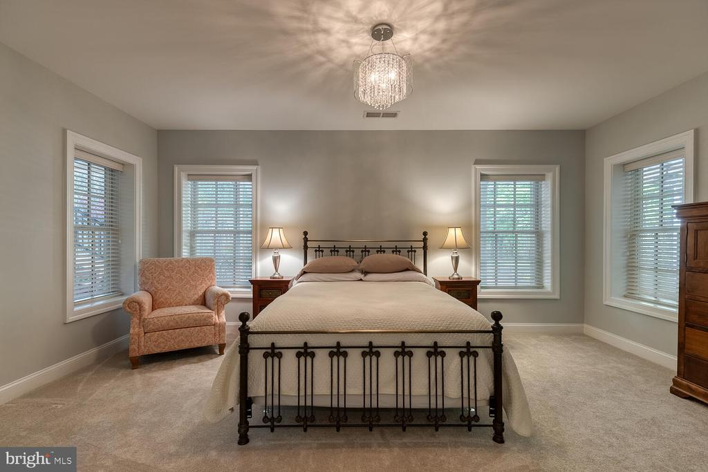 5th bedroom in lower level - 42091 NOLEN CT, LEESBURG