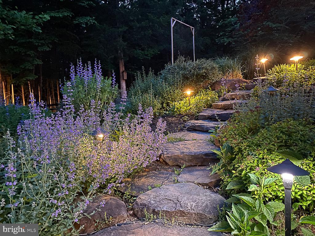 Stone walkway with lighting. - 42091 NOLEN CT, LEESBURG