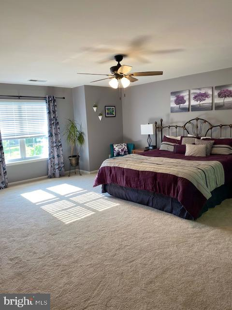 Primary Suite - 500 ROSEMARY LN, PURCELLVILLE