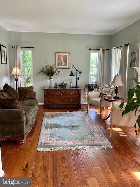 Living Room - 500 ROSEMARY LN, PURCELLVILLE