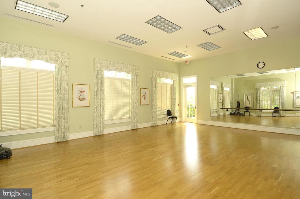 Potomac Green Dance/Yoga Studio - 44484 MALTESE FALCON SQ, ASHBURN