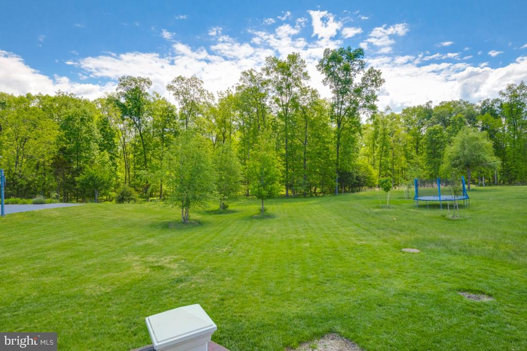 View from the Covered Deck - 42063 MIDDLEHAM CT, ASHBURN