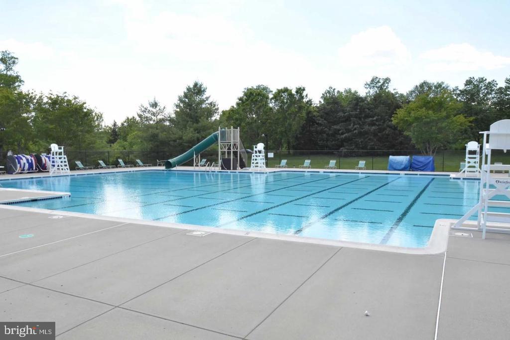 Community swimming pool - 42918 PARK BROOKE CT, BROADLANDS