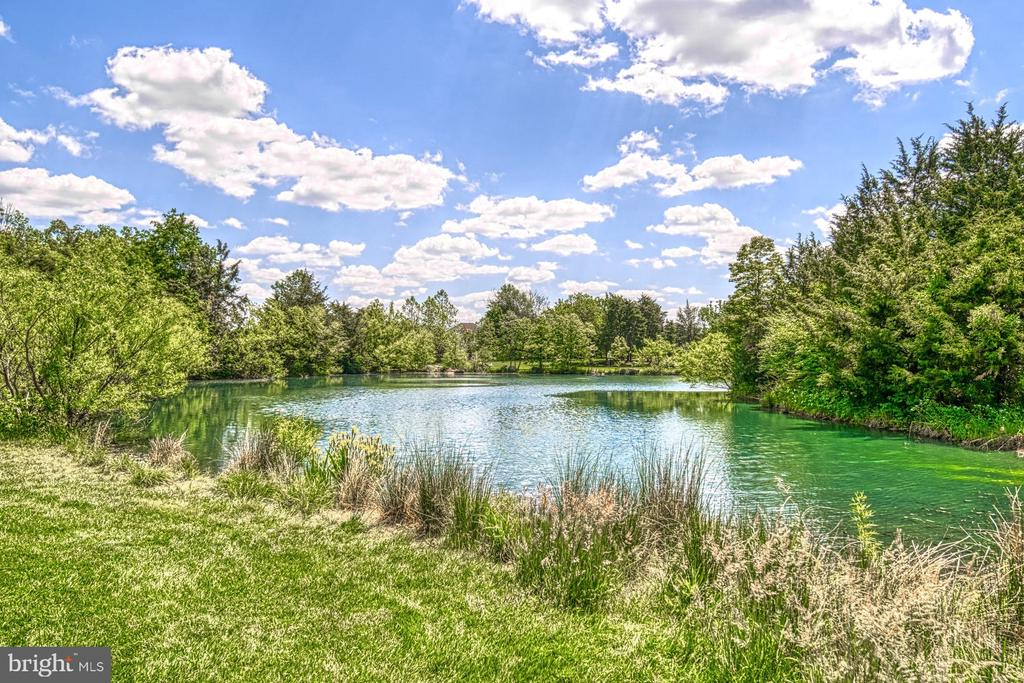There are Several Ponds Stocked with Fish - 42416 RINGNECK PL, BRAMBLETON